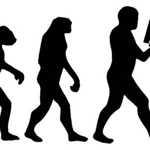 mi evolucion inversora